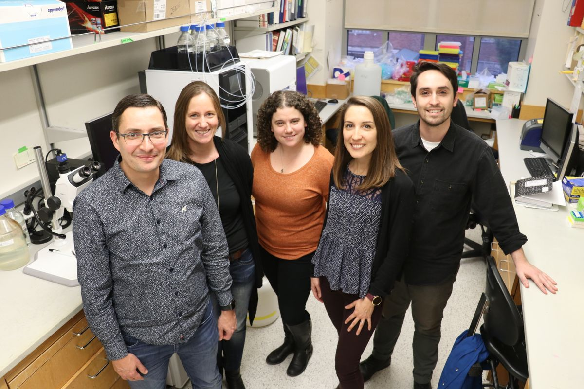 Health researchers