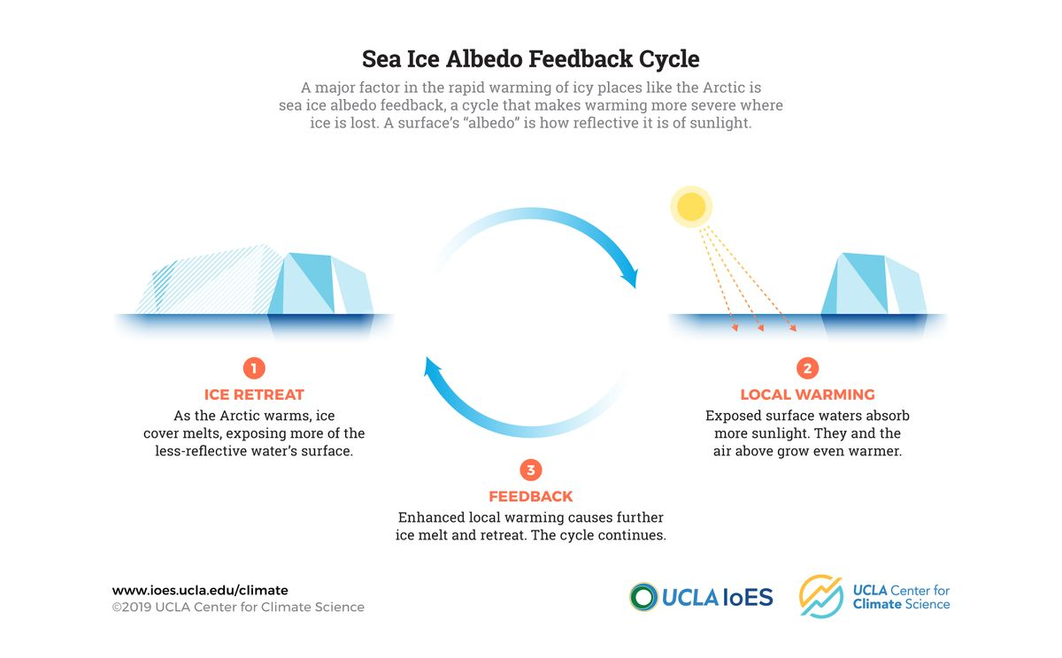 UCLA sea ice albedo feedback illustration