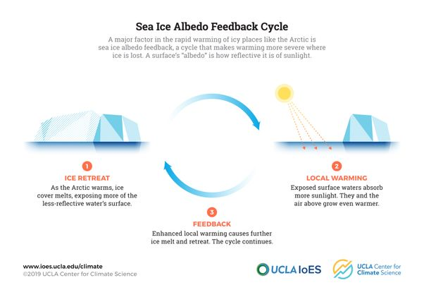 UCLA sea ice albedo feedback illustration