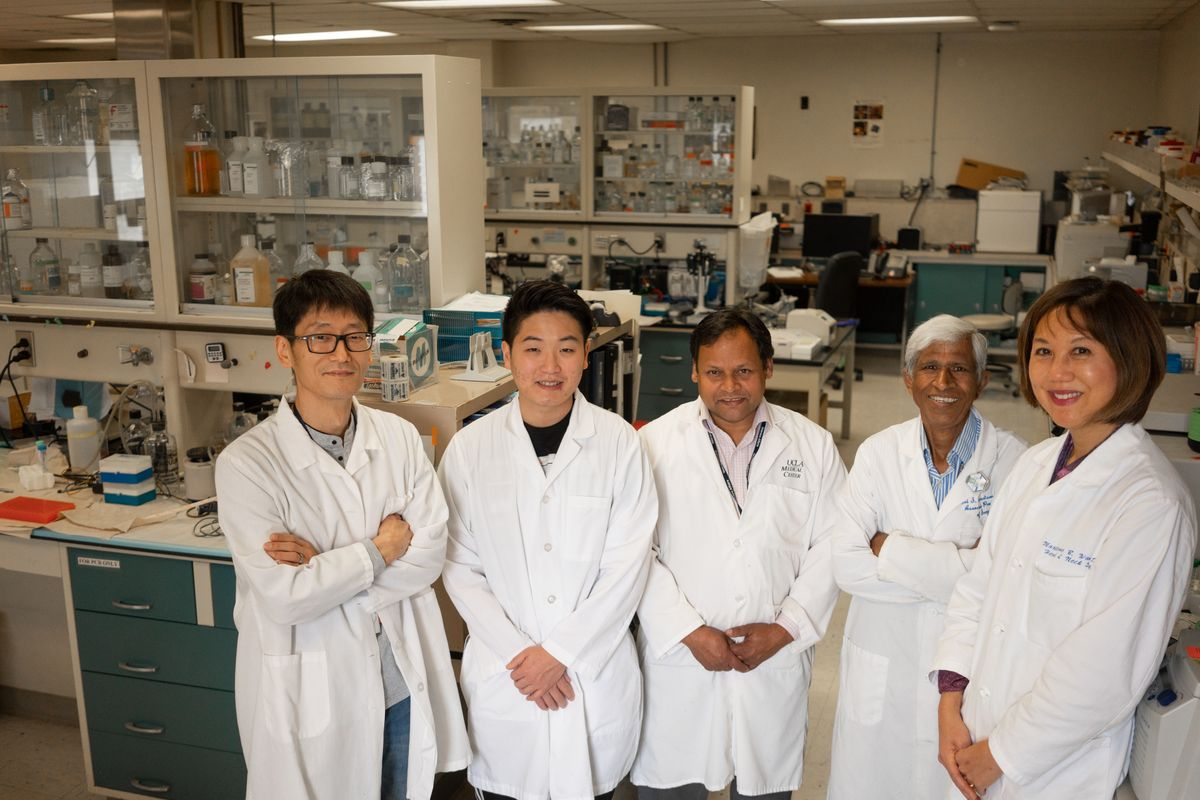 Wang research team