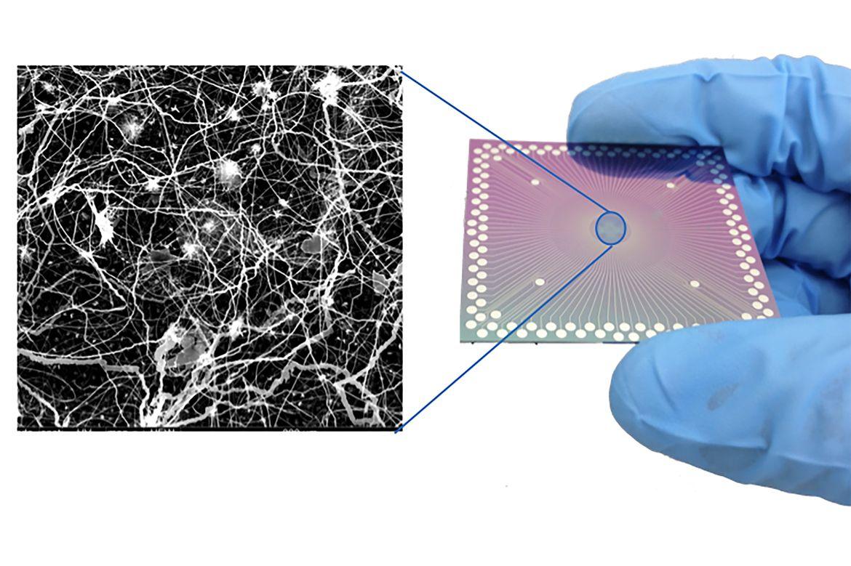 Nanowire arrangement