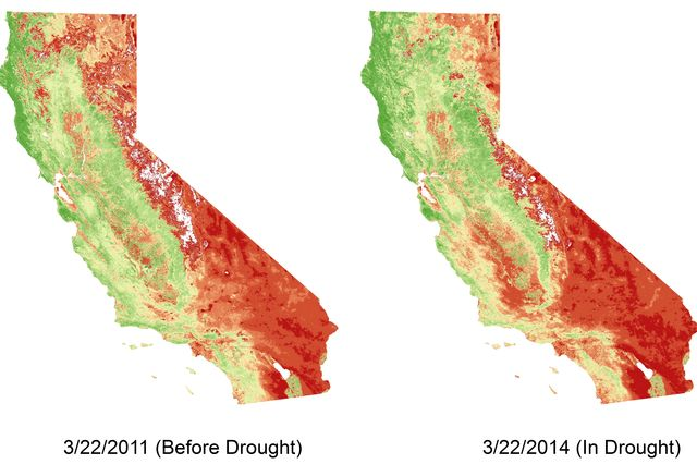 Before and after drought