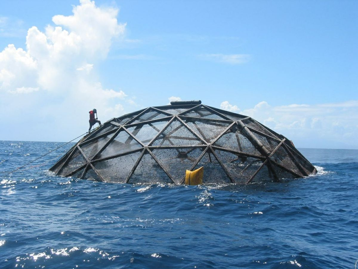 aquaculture NOAA