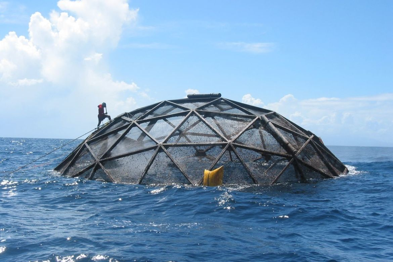 aquaculture NOAA