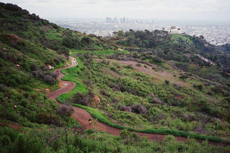 Griffith Park vista