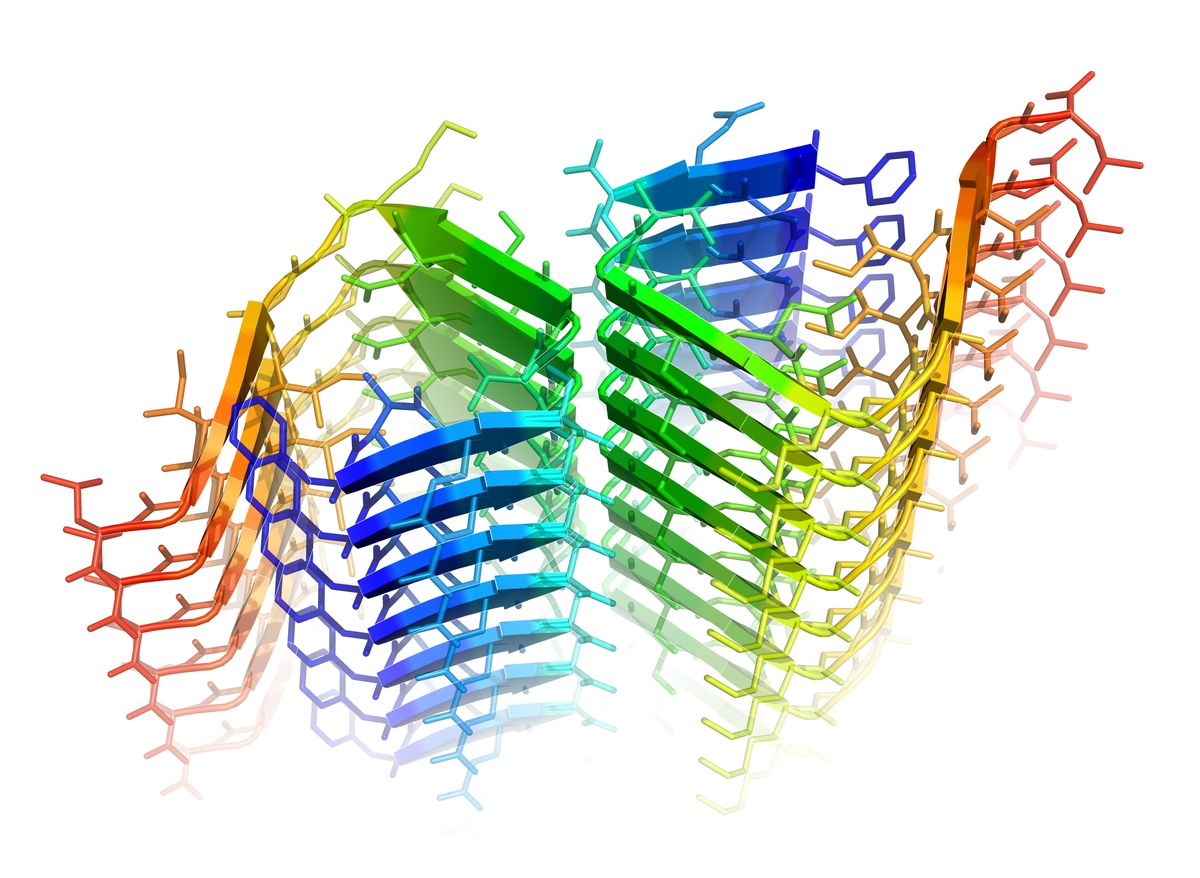 Molecular zipper