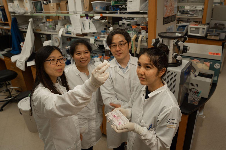Kamata lab team