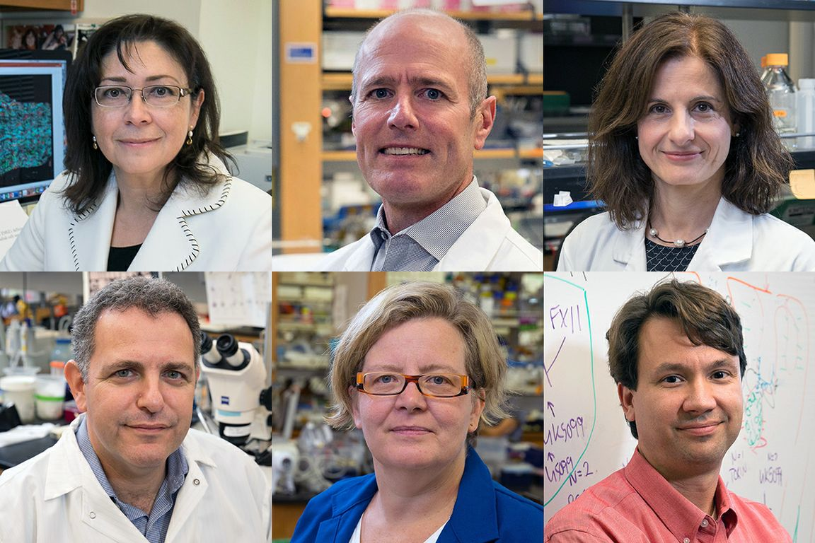 Alzheimers research team