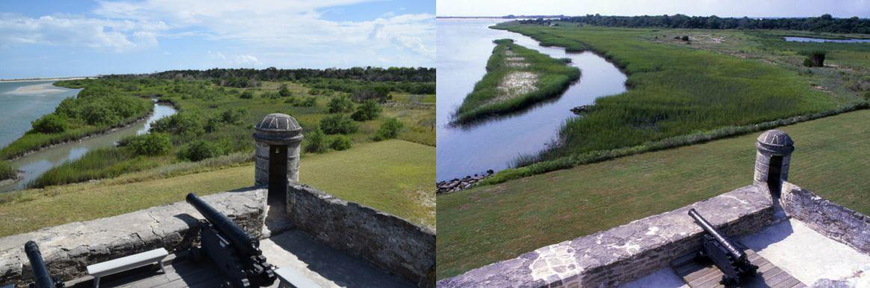 Mangroves comparison