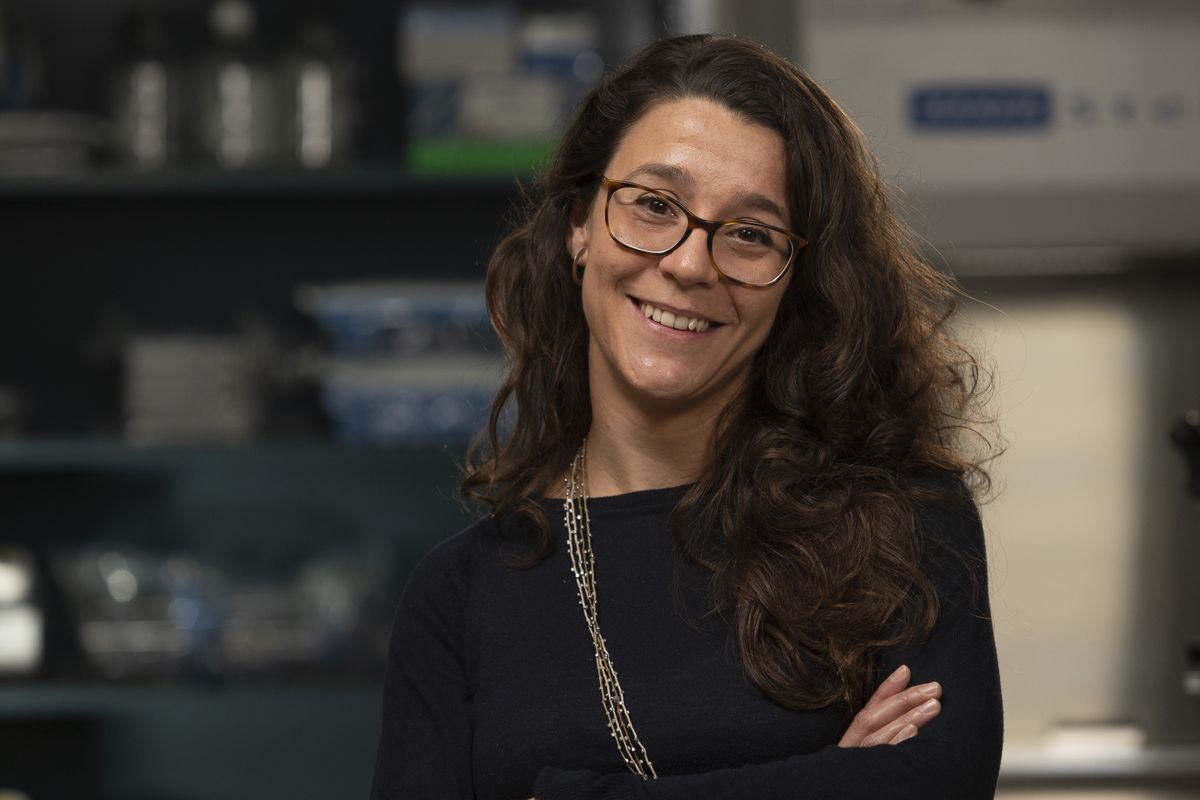 Cristina Puig Saus