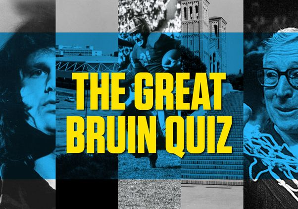 The Great Bruin Quiz