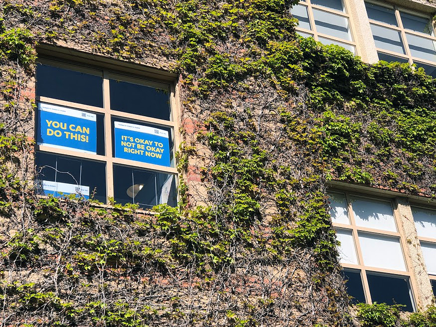 "Signs in a window of the Ashe Student Health Center at UCLA that read: ""You can do this!"" and ""It's okay to not be okay right now"""