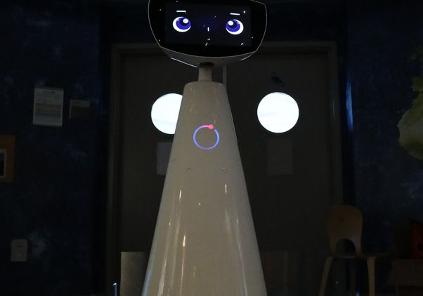 Click to open the large image: Full picture of Robin the robot