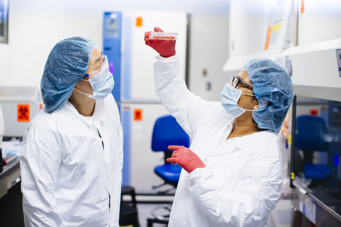 Scientists in Broad Stem Cell Research Center
