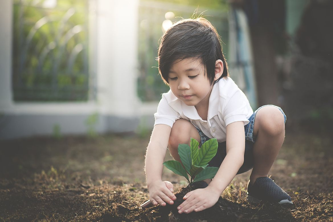 Child planting