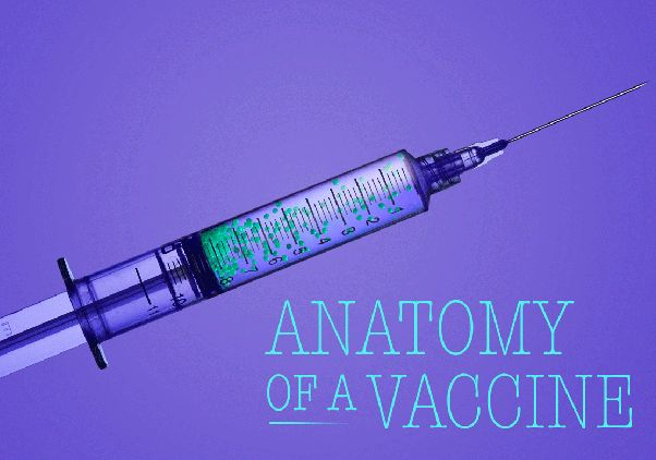 Anatomy of a Vaccine