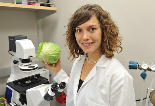 Amy Rowat in lab holding head of lettuce