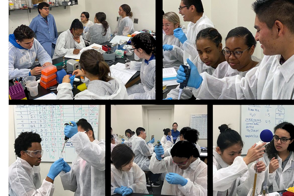 HHMI Pathways students