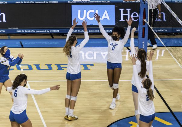 Click to open the large image: UCLA Women's Volleyball