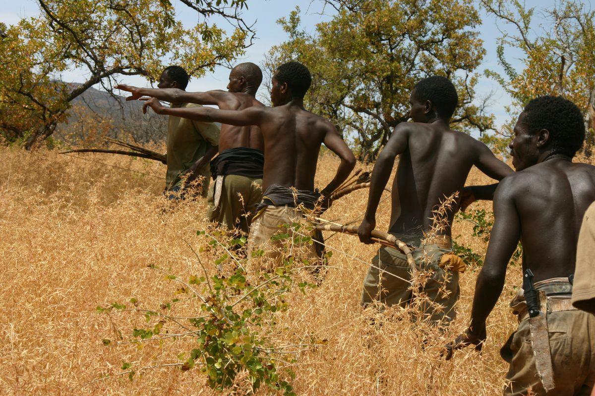 Men hunting zebra