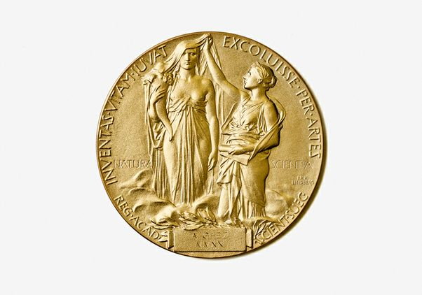 Click to open the large image: Nobel Prize medal