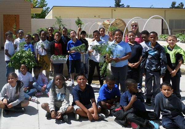 Click to open the large image: Brentwood Learning Garden Project