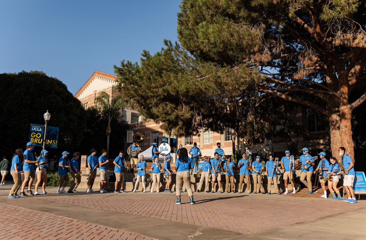 Marching band and Westwood Wander