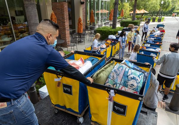 Click to open the large image: Line of bins for UCLA move-in 2021