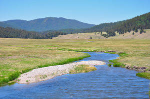 The virtual watershed framework will be tested with data from three well-instrumented watersheds, one in each state. In New Mexico, data will be collected from the Jemez Watershed in the Valles Caldera.