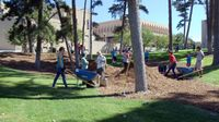 Students Improve UNM Campus for Homecoming