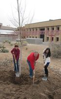 UNM celebrates Earth Day, Arbor Day with tree plantings