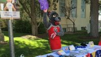 UNM United Way Campaign underway