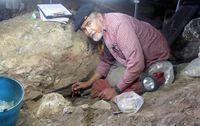 "Ancestors Lecture series presents ""The Red Lady of El Mirón Cave"""