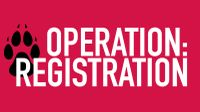 'Operation: Registration' back to help Lobos