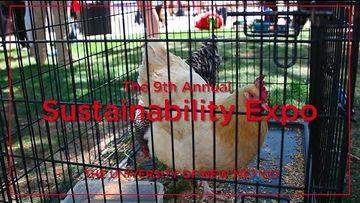 Sustainability Expo