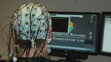 UNM researchers design patient repository for more effective EEG diagnoses