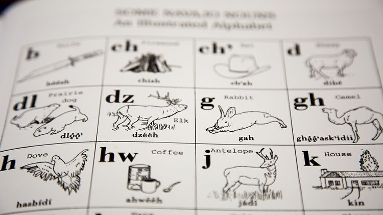 Navajo Language Worksheet