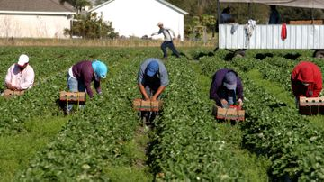 The struggles of farmworkers take center stage at UNM
