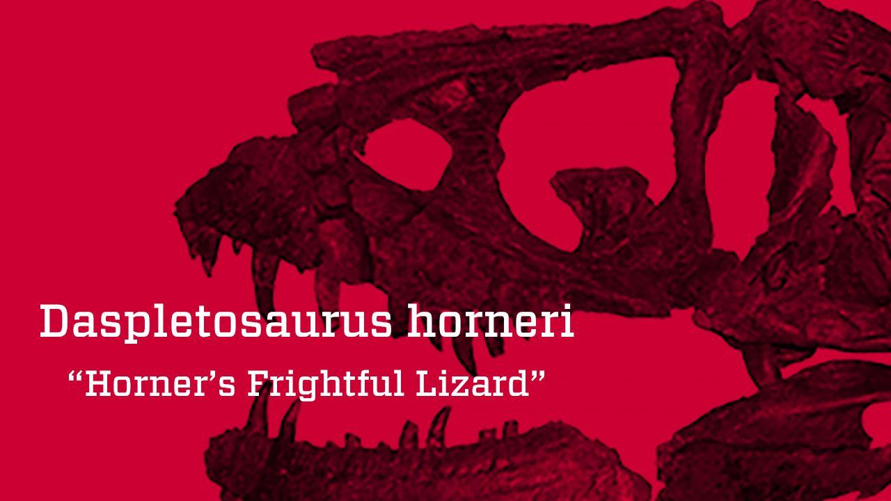 Horner's Frightful Lizard