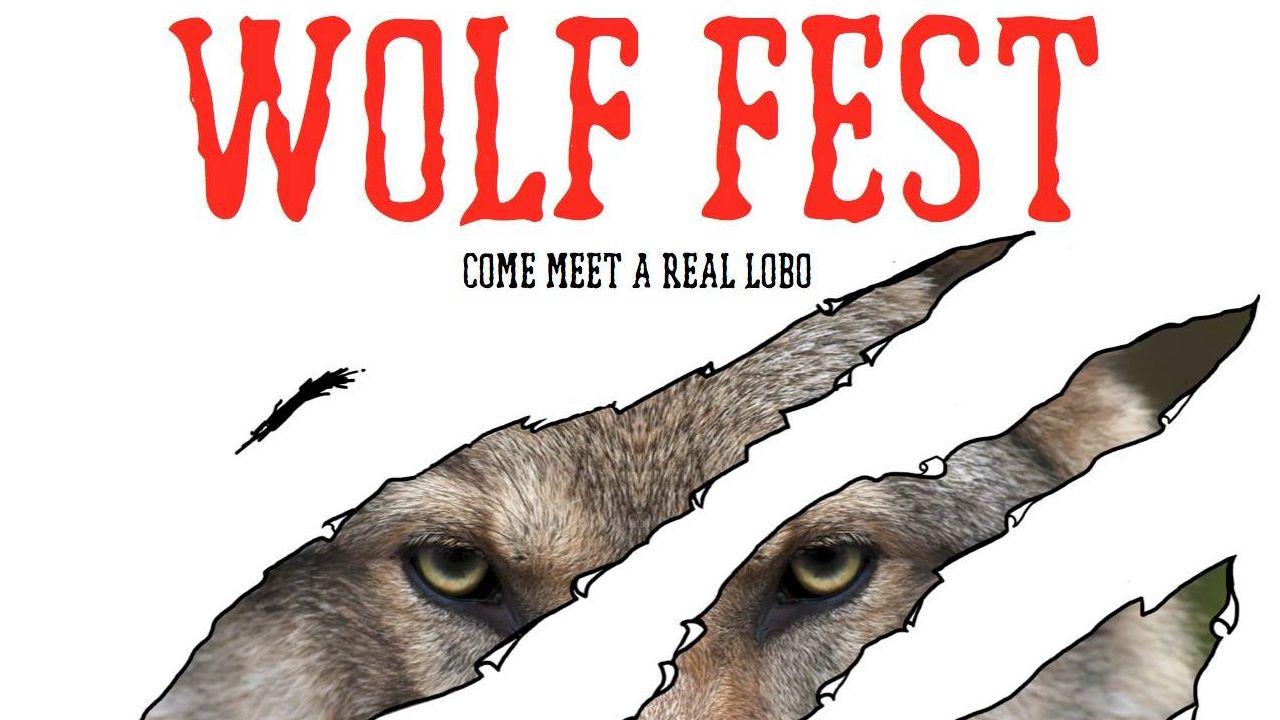 Wolf Fest 2017