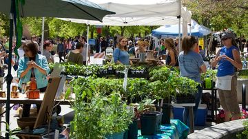 Sustainability Expo set for April 20