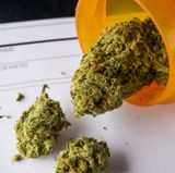 Study finds medical cannabis is effective at reducing opioid addiction