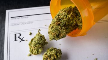Study finds legal cannabis may reduce use of dangerous prescription drugs