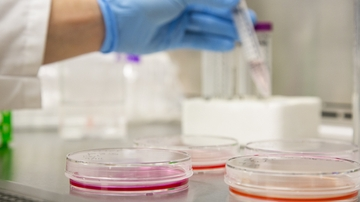 Unlocking the secrets of disease progression
