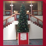 ASUNM Community Experience hosts annual Giving Tree