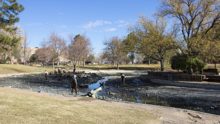 West side of Duck Pond before cleaning