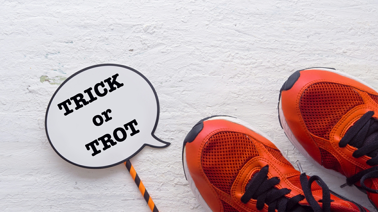 Trick or Trot