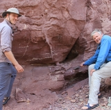 Tasmanian 'devil in disguise' is key puzzle piece for understanding supercontinents