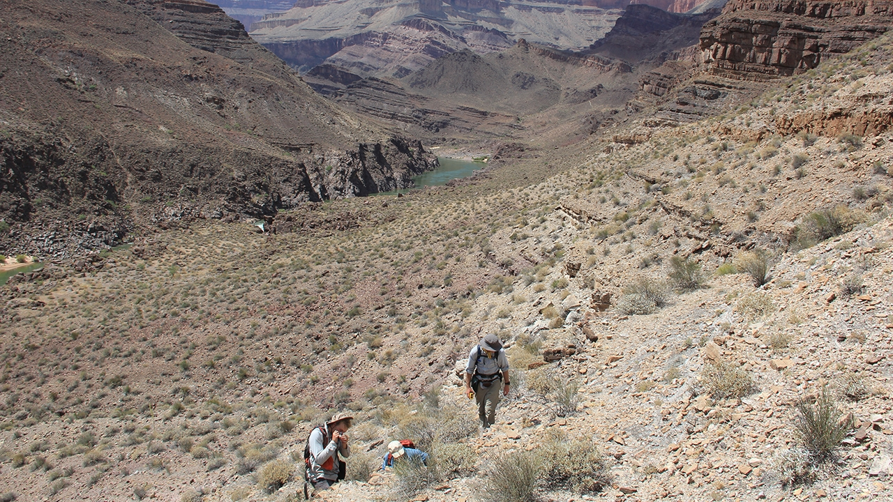 Scientists in the Grand Canyon