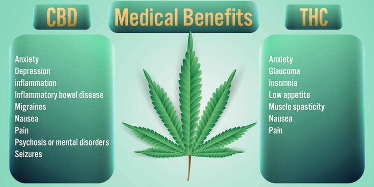 Medical benefits of CBD and THC